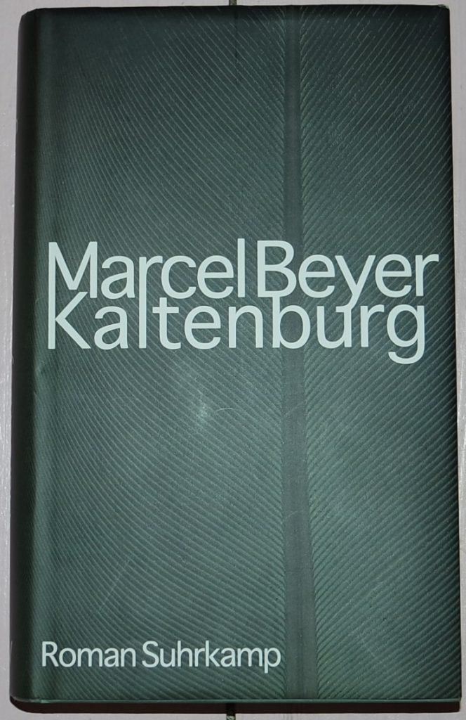 Marcel Beyer: Kaltenburg